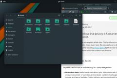 Web browser e gestore dei file su Manjaro GNOME