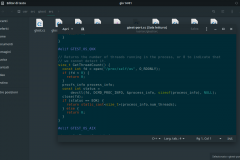 File sorgente aperto nell'editor di testo su Manjaro GNOME
