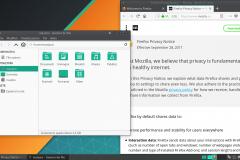 Web browser e gestore file aperti su Manjaro XFCE